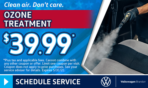 Ozone Treatment Coupon in Tampa FL
